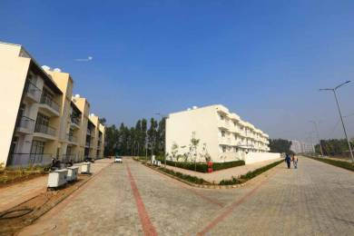 1350 sqft, 3 bhk Apartment in Wave Boulevard Sector 85 Mohali, Mohali at Rs. 43.9000 Lacs
