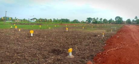 1350 sqft, Plot in Builder Fortune delight Vuyyuru, Vijayawada at Rs. 12.7500 Lacs