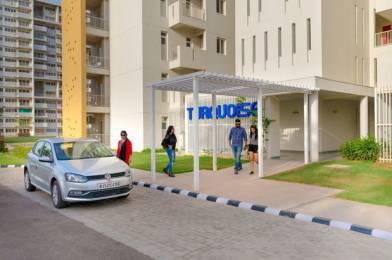 1350 sqft, 2 bhk Apartment in Vatika Infotech City Plots Thikariya, Jaipur at Rs. 28.0000 Lacs