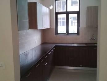 1640 sqft, 3 bhk BuilderFloor in omaxe ltd Greens Dera Bassi, Chandigarh at Rs. 15000