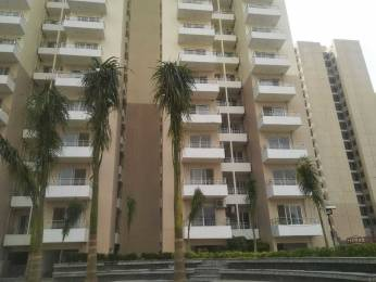 1390 sqft, 3 bhk Apartment in Amrapali Sapphire Sector 45, Noida at Rs. 70.0000 Lacs