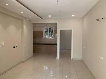 1350 sqft, 3 bhk Apartment in Builder ESSENTIA HOMES Ambala Highway, Zirakpur at Rs. 35.0000 Lacs