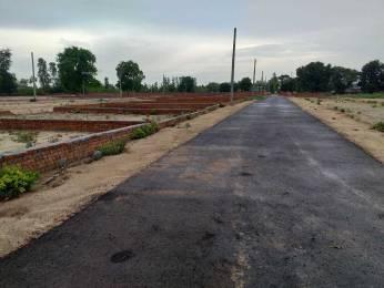 1000 sqft, Plot in Builder pitamabra Naubasta, Kanpur at Rs. 7.7000 Lacs