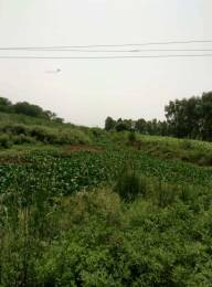18000 sqft, Plot in Builder Project Tappal, Aligarh at Rs. 60.0000 Lacs
