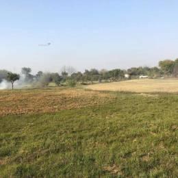 4995 sqft, 3 bhk Villa in Builder bhelpa green Sohna Road Sector 67, Gurgaon at Rs. 32.0000 Lacs