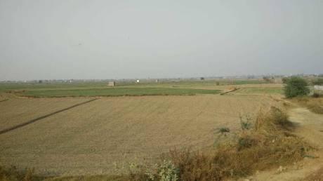 15300 sqft, Plot in Builder Project Public Convenience Jewar, Greater Noida at Rs. 21.0000 Lacs