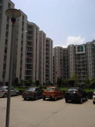 1460 sqft, 3 bhk Apartment in BDI Sunshine City Sector 15 Bhiwadi, Bhiwadi at Rs. 25.0000 Lacs
