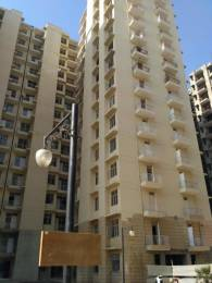 1300 sqft, 3 bhk Apartment in Avalon Rangoli Sector 65 Bhiwadi, Bhiwadi at Rs. 15.8000 Lacs