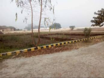 1200 sqft, Plot in Builder Project Phaphamau Road, Allahabad at Rs. 7.2000 Lacs