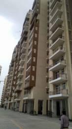1150 sqft, 2 bhk Apartment in Terra Heritage Sector 51 Bhiwadi, Bhiwadi at Rs. 19.0000 Lacs