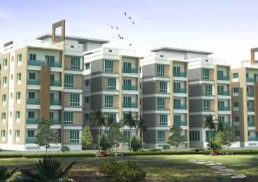 1470 sqft, 3 bhk Apartment in Trident Galaxy Kalinga Nagar, Bhubaneswar at Rs. 58.8600 Lacs