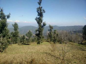 2178 sqft, 3 bhk IndependentHouse in Builder Project Near Mukteshwar, Nainital at Rs. 65.0000 Lacs