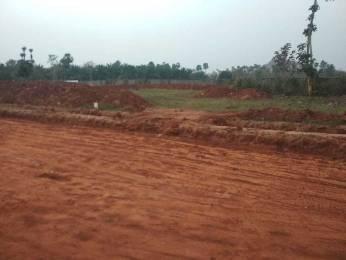 1980 sqft, Plot in Builder near vizayanagaram highway from alluris nandanavanam at tagarapuvalasa y junction Y Junction, Visakhapatnam at Rs. 30.8000 Lacs