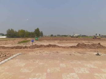 1161 sqft, Plot in TDI Tuscan Residency Sector 110 Mohali, Mohali at Rs. 16.0000 Lacs