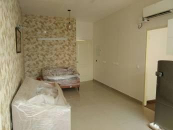 833 sqft, 3 bhk Apartment in Terra Lavinium Sector 75, Faridabad at Rs. 26.3000 Lacs