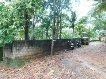 677 sqft, Plot in Builder Project Sreekariyam, Trivandrum at Rs. 68.0000 Lacs