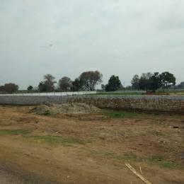 17100 sqft, Plot in United La Prisma Singhpura, Zirakpur at Rs. 60.8000 Lacs