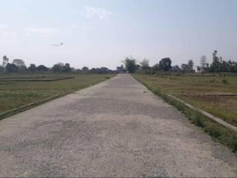 900 sqft, Plot in Builder Bhawala Greens Bhauwala, Dehradun at Rs. 8.0000 Lacs