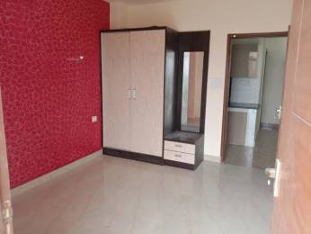 1465 sqft, 3 bhk Apartment in Sikka Kaavyam Greens Sector 143B, Noida at Rs. 40.0000 Lacs