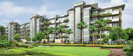 1450 sqft, 3 bhk Apartment in Emaar Palm Hills Sector 77, Gurgaon at Rs. 19000