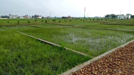 1000 sqft, Plot in Builder Godhana Chandoli, Varanasi at Rs. 18.0000 Lacs