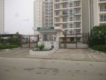 815 sqft, 1 bhk Apartment in Jaypee The Pavilion Court Sector 128, Noida at Rs. 5.0000 Lacs
