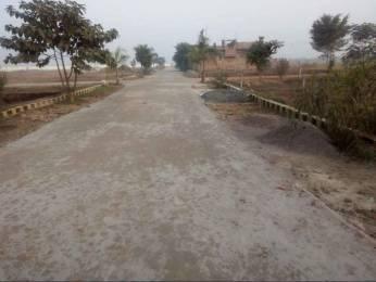 1000 sqft, Plot in Builder Project Jhusi, Allahabad at Rs. 12.0000 Lacs