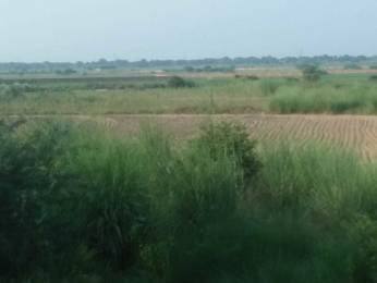 3375 sqft, Plot in Builder Project Sarsol, Aligarh at Rs. 15.0000 Lacs