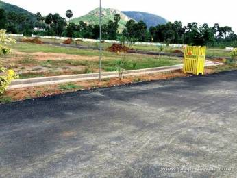 1800 sqft, Plot in Builder Kamakhya layout Ragam Peta, Kakinada at Rs. 20.0000 Lacs