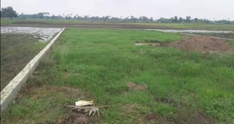 800 sqft, Plot in Builder Project AIIMS Patna Road, Patna at Rs. 8.0000 Lacs