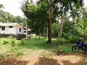 3042 sqft, Plot in Builder Project Vellanadu Nedumangad Road, Trivandrum at Rs. 17.5000 Lacs