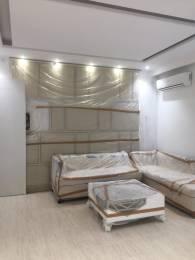 1706 sqft, 3 bhk Apartment in Trishla City Bhabat, Zirakpur at Rs. 56.7500 Lacs