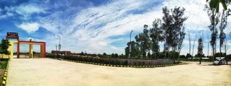 900 sqft, Plot in Builder Shahbad Tijara, Bhiwadi at Rs. 7.0000 Lacs