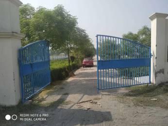 1800 sqft, Plot in Builder Project Brijghat, Hapur at Rs. 8.0000 Lacs
