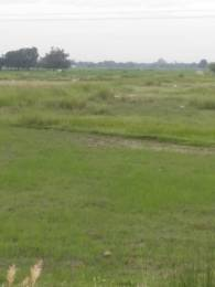 1800 sqft, Plot in Shubham Jewar City Near Jewar Airport At Yamuna Expressway, Greater Noida at Rs. 40.0000 Lacs