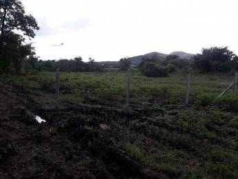 1076 sqft, Plot in Builder Project Maan, Pune at Rs. 16.0000 Lacs