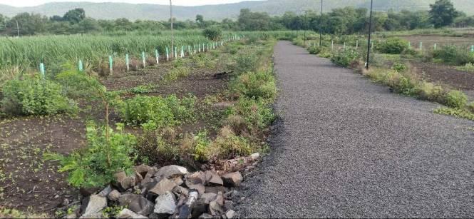 1000 sqft, Plot in Builder Bloom Aura Hinjewadi, Pune at Rs. 6.5000 Lacs