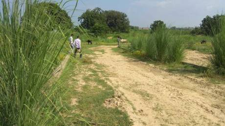 1000 sqft, Plot in Builder Himwati shiv city Gohniya, Allahabad at Rs. 3.5000 Lacs