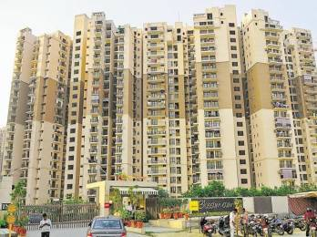 1060 sqft, 2 bhk Apartment in Logix Blossom County Sector 137, Noida at Rs. 50.0000 Lacs