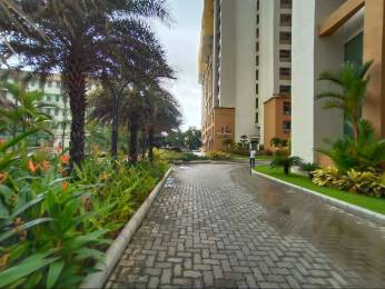 2000 sqft, 3 bhk Apartment in Builder Project Attavar, Mangalore at Rs. 35000