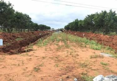 2250 sqft, Plot in Builder VARUNIS HALLMARK Tukkuguda, Hyderabad at Rs. 42.4975 Lacs
