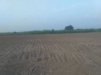 4050 sqft, Plot in Builder Project Sarsol, Aligarh at Rs. 18.0000 Lacs
