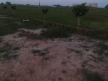 1360 sqft, Plot in Builder godhna Ram Nagar, Varanasi at Rs. 18.0000 Lacs