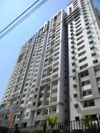 3600 sqft, 3 bhk Villa in Builder Project Kukatpally, Hyderabad at Rs. 2.7000 Cr