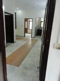 1640 sqft, 2 bhk Apartment in Omaxe The Forest Spa Sector 43, Faridabad at Rs. 25000