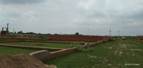 1250 sqft, Plot in Builder Project Jhalwa, Allahabad at Rs. 14.3000 Lacs