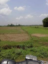 1360 sqft, Plot in Builder Ramnagar Varanasi plot Ram Nagar Industrial Area, Varanasi at Rs. 20.0000 Lacs