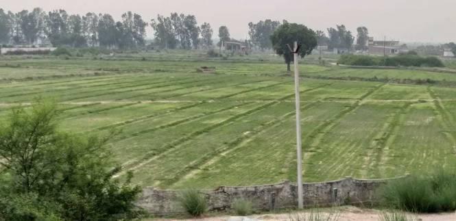 900 sqft, Plot in Builder Project Near Jewar Airport At Yamuna Expressway, Greater Noida at Rs. 8.5000 Lacs