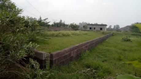 1125 sqft, Plot in Builder Project Near Jewar Airport At Yamuna Expressway, Greater Noida at Rs. 10.5000 Lacs