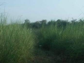 2250 sqft, Plot in Builder Project Sarsol, Aligarh at Rs. 10.0000 Lacs